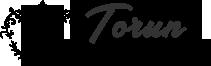 Torun Metal Dekorasyon